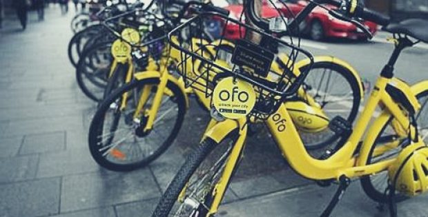 Bike-sharing firm Ofo vows